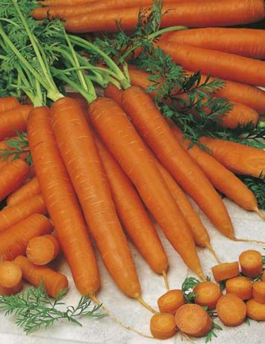 Carrot Navarre F1