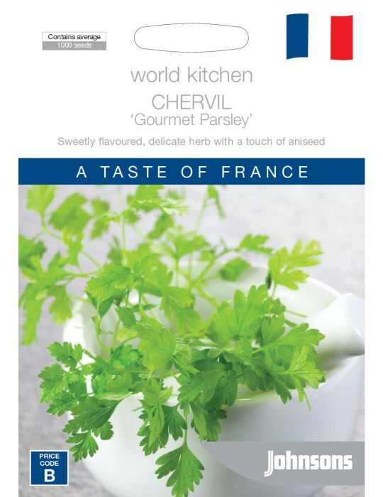 Chervil 'Gourmet Parsley'