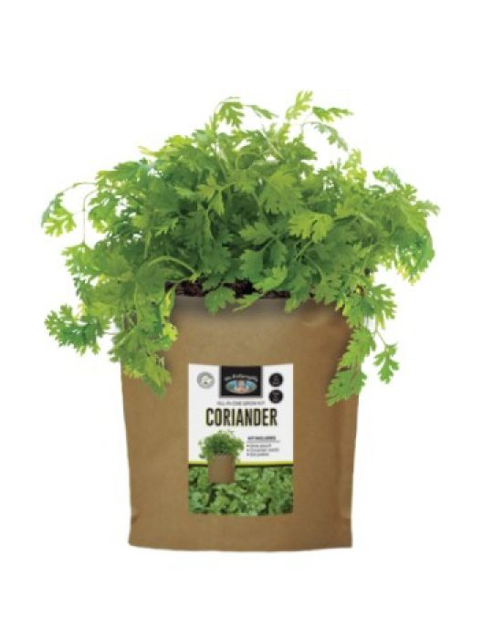 Coriander - Grow Pouch Kit