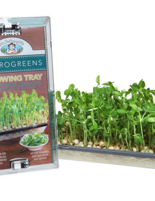 Microgreens Growing Tray