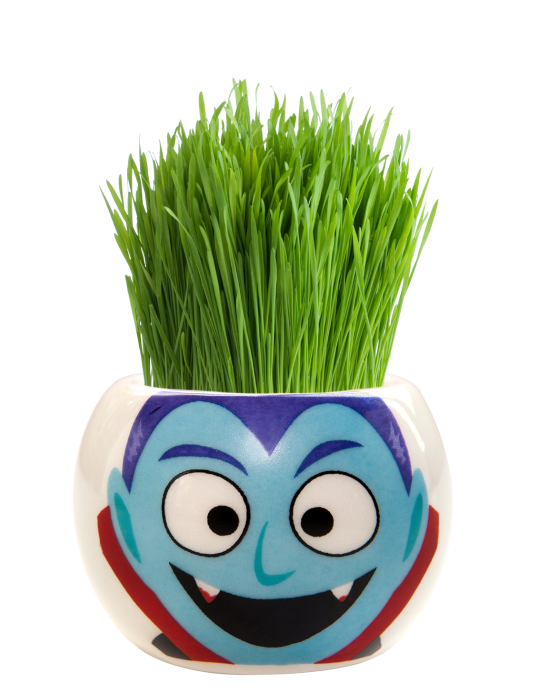 Grass Hair Kit -  Halloween Party (Dracula)