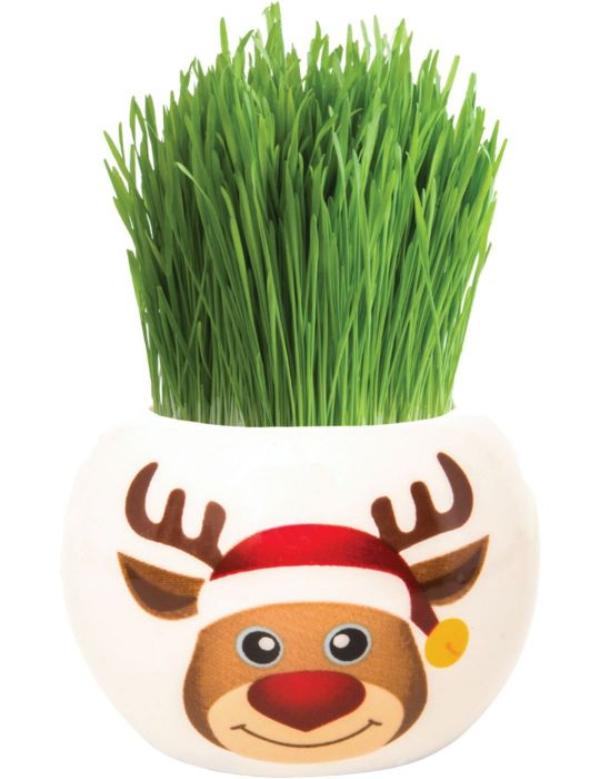 Grass Hair Kit - Christmas (Rudolph)