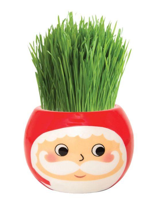 Grass Hair Kit - Christmas (Santa)