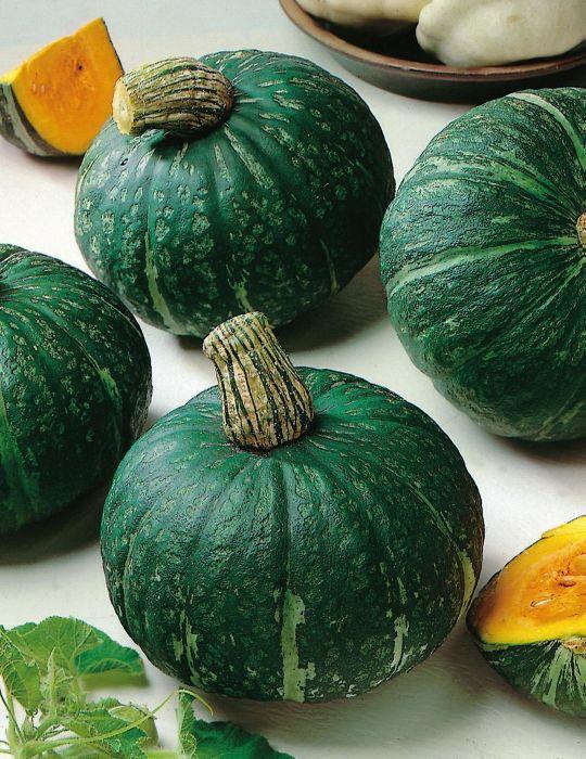 Pumpkin Buttercup