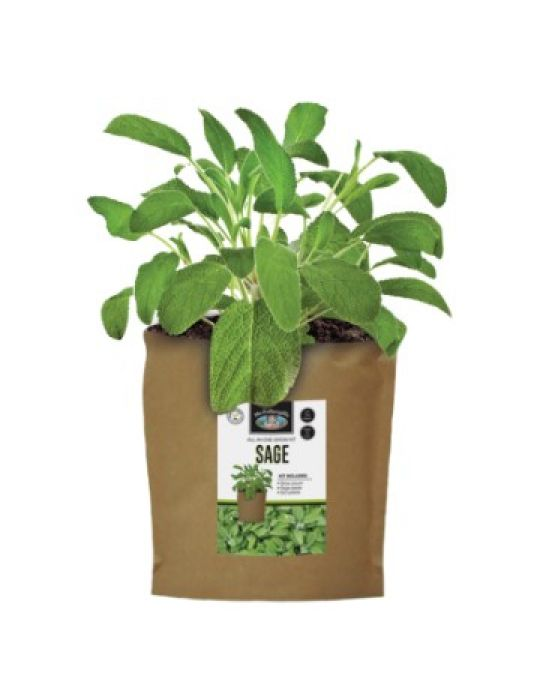 Sage - Grow Pouch Kit