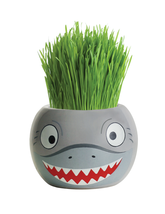 Grass Hair Kit - Ocean Animals (Shark)