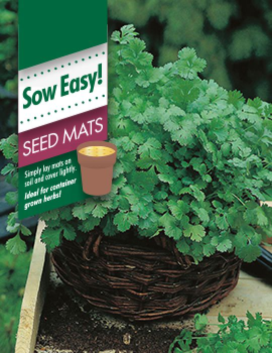 Coriander Seed Mat