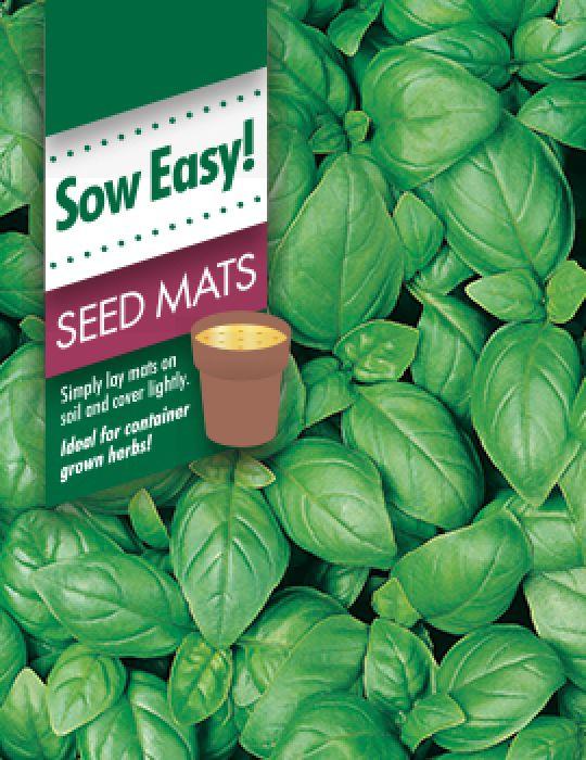 Basil Sweet Genovese Seed Mat