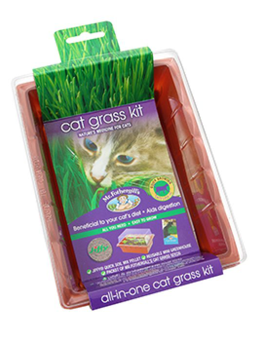 Cat Grass Seed Raiser Kit