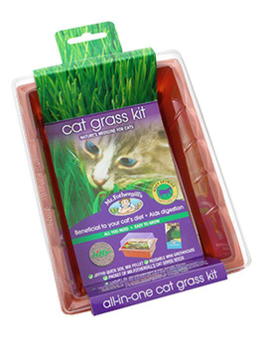 Cat Grass Seed Raiser Kit