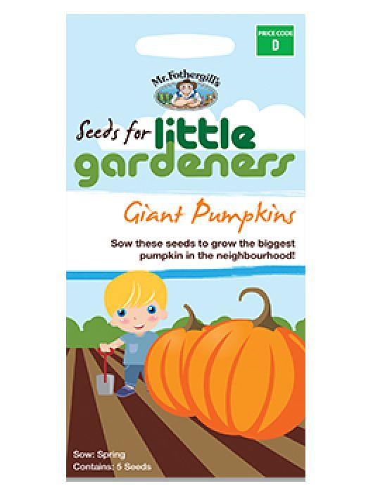 Little Gardeners - Giant Pumpkins