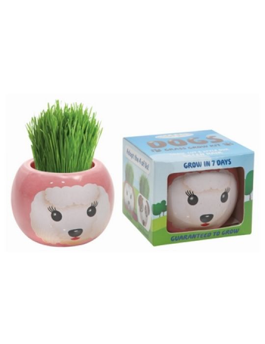 Grass Hair Kit - Dogs (Poodle)