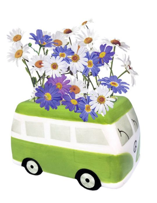 Daisy Grow Kit - Flower Power Van - Green