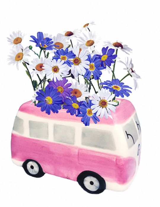 Daisy Grow Kit - Flower Power Van - Pink