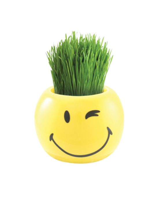 Grass Hair Kit -Smiley Faces (Wink)