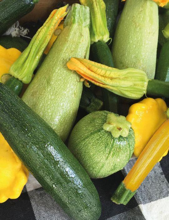 Zucchini Gourmet Mix