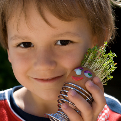How To Make Cress Egg Heads