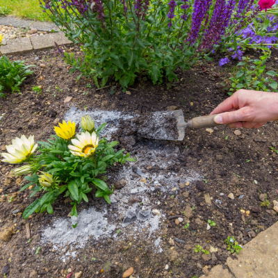 Using Wood Ash in the Garden