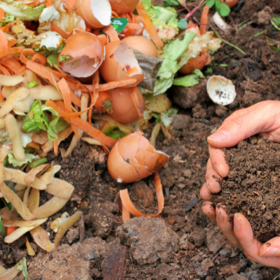 The Dirt on Good Composting