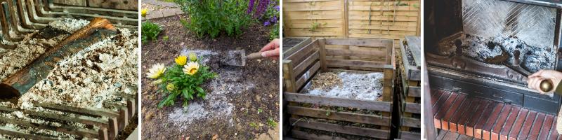 Using ash in the garden